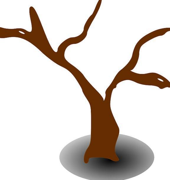 Tree Sapling Deceased Dry Thirsty Dead Lifeless Si