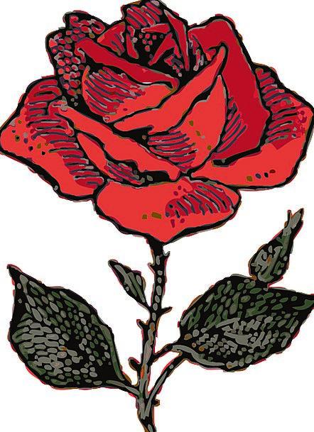 Red Rose Darling Rosa Love Rose Design Free Vector