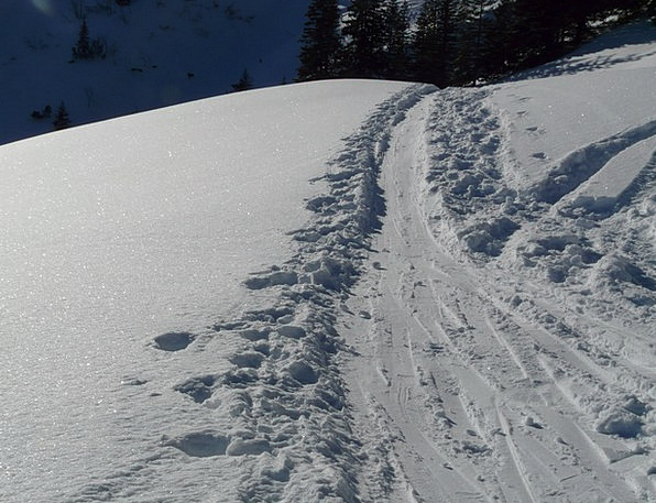 Traces Suggestions Snow Snowflake Trail Deep Snow