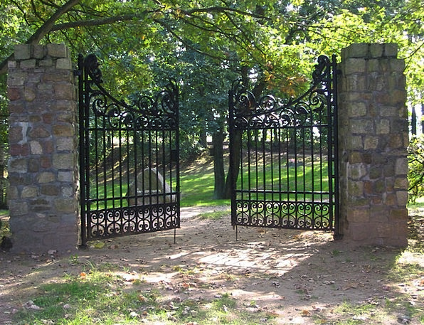 Gate Entrance Input Contribution Wrought Iron Door