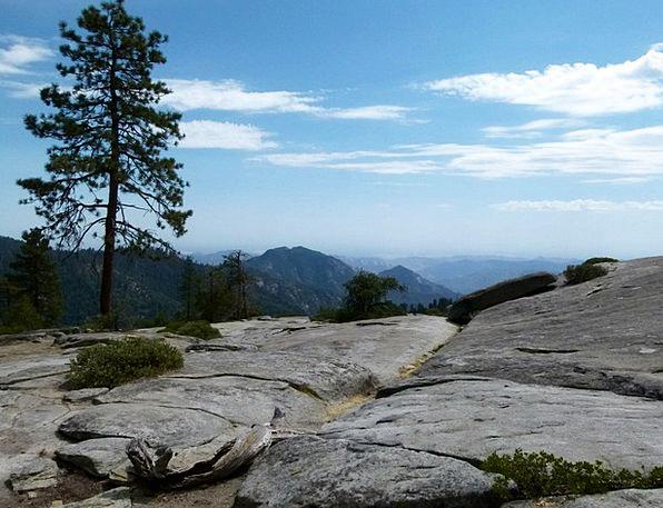 Sequoia National Park Landscapes Nature Usa Califo