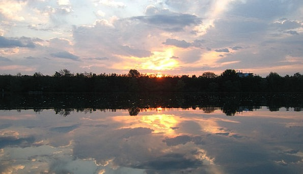Mirroring Reflecting Landscapes Woodland Nature Su