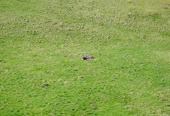 Meadow Field Lawn Man Gentleman Grass Person Being