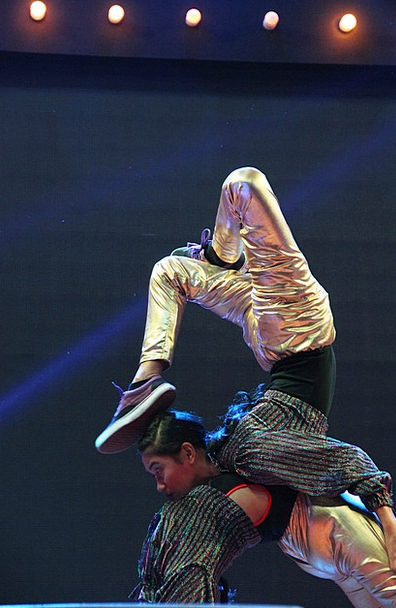 Acrobat Gymnast Player Dancer Ballerina Performer