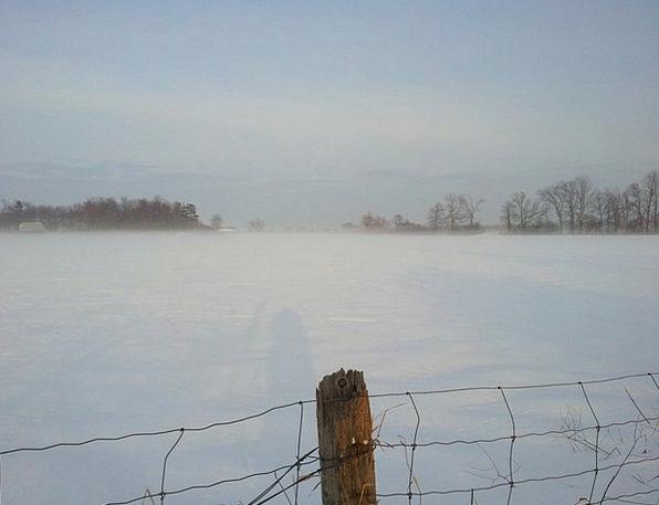 Winter Season Foggy Winter Day Ottawa