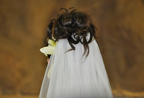 Wedding Bridal Snowy Married Wedded White Pair Vei
