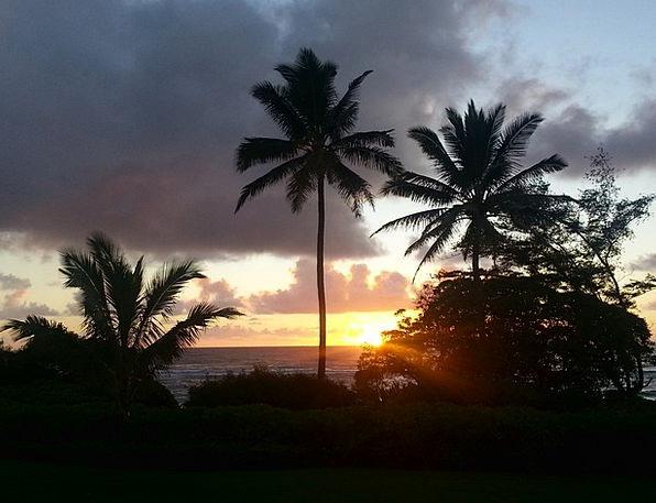 Hawaii Vacation Travel Kauai Sunrise Palm Trees Is