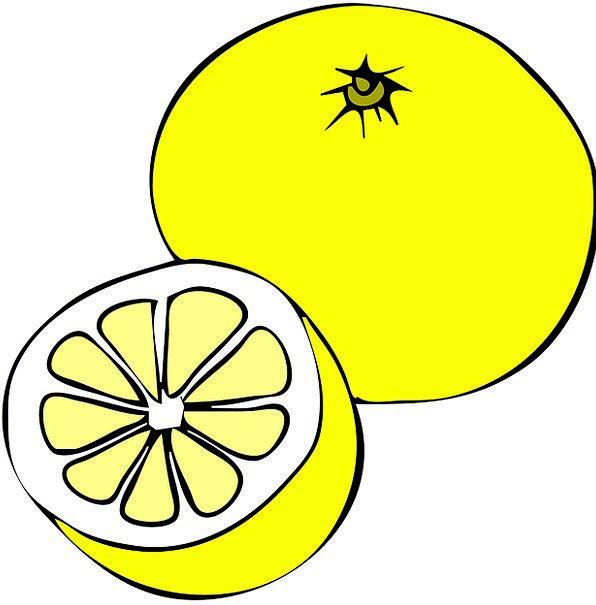 Lemon Dud Drink Food Fruit Ovary Grapefruit Vegeta