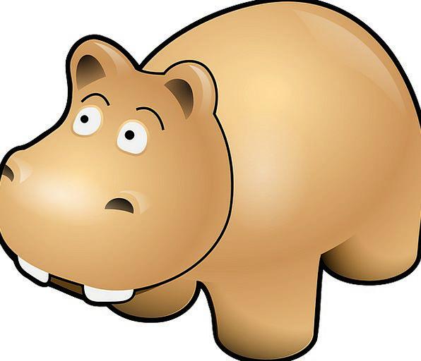 Hippo Chocolate Mammal Creature Brown Baby Danger