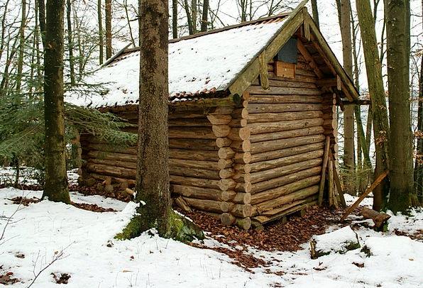 Log Cabin Landscapes Nature Forest Woodland Block