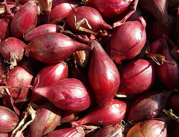 Red Shallots Drink Food Shallot Shallots Eat Noble