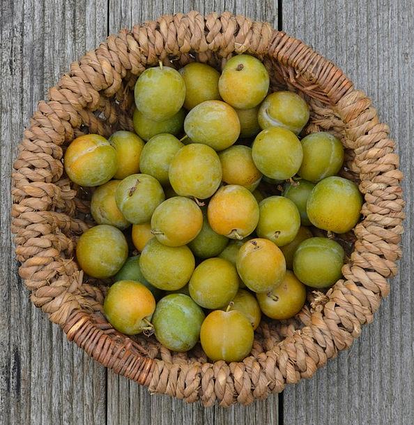 Plums Rewards Drink Bag Food Fruit Ovary Basket Re