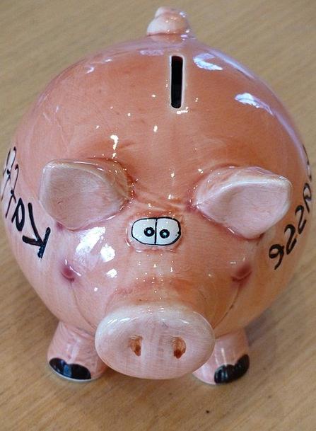 Piggy Bank Finance Business Savings Bank Piglet Fu