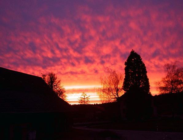 Morning A.m. Sun Morgenrot Sky Blue Dawn Red Begin