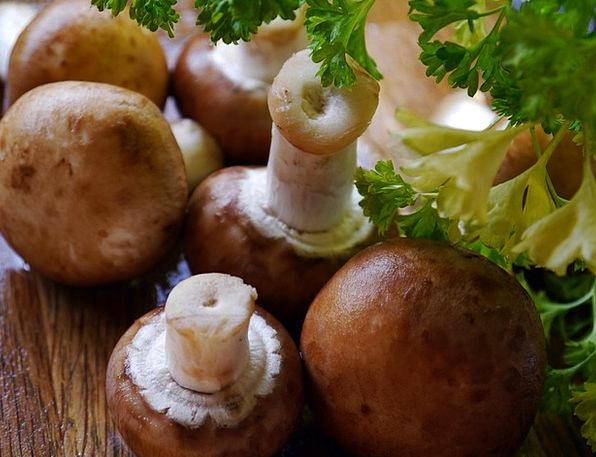 Mushroom Burgeon Drink Food Fungi Mushrooms Fungus
