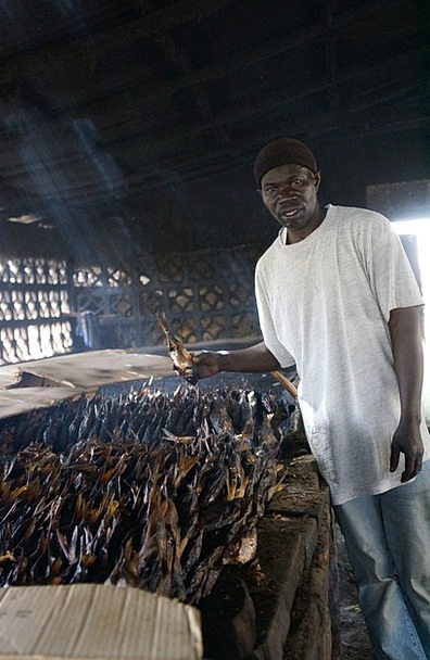 Smoked Fish Craft Industry White Black Haring Blac