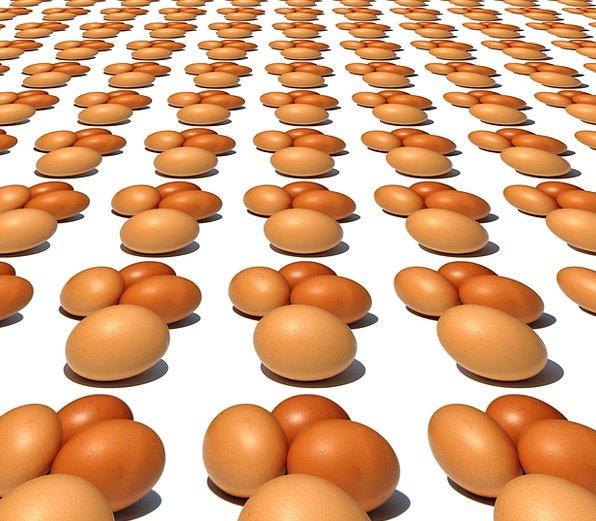 Egg Ovum Drink Nourishment Food Many Numerous Food