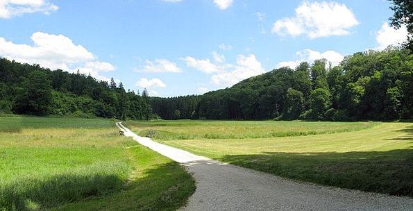 Lonetal Landscapes Nature Summer Straw-hat Dry Val