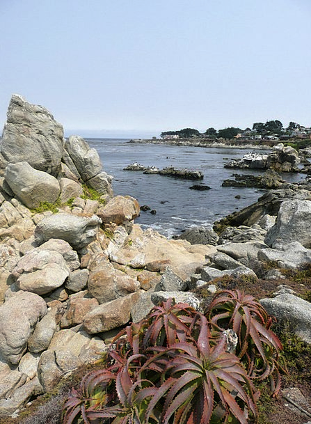 Shoreline Beach Landscapes Shore Nature California