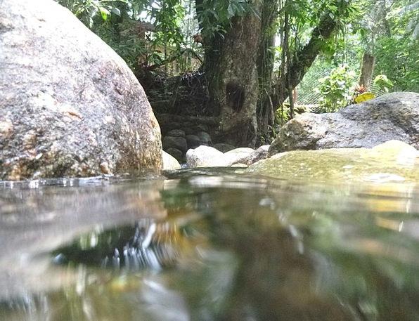 Rio Landscapes Nature Nature Countryside Agua Ston