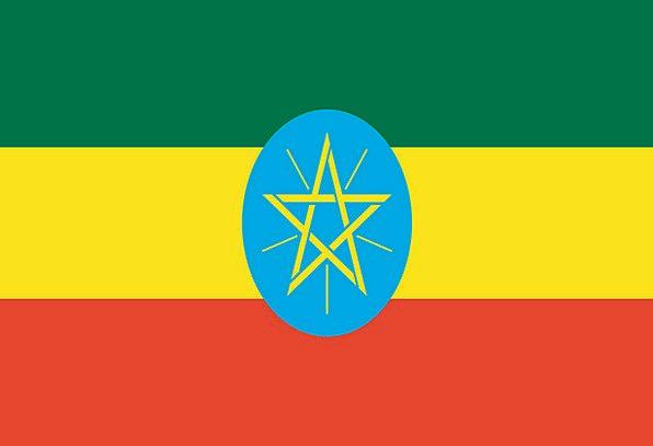 Ethiopia Standard National Flag Flag Nationality N