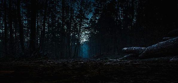 Spiritual Forest III by Fataliis on DeviantArt