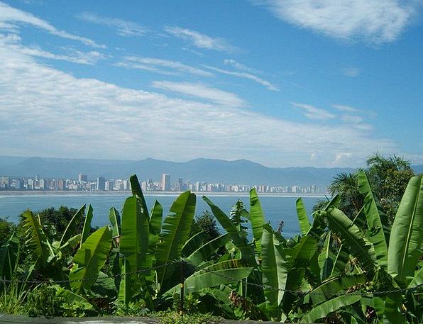Vista View Landscapes Deface Nature Banana Leaf Ma