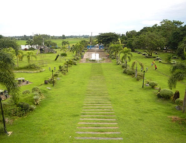 Philippines Landscapes Scenery Nature Park Common