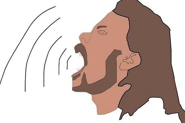 Singer Vocalist Vocal Audio Acoustic Singing Song
