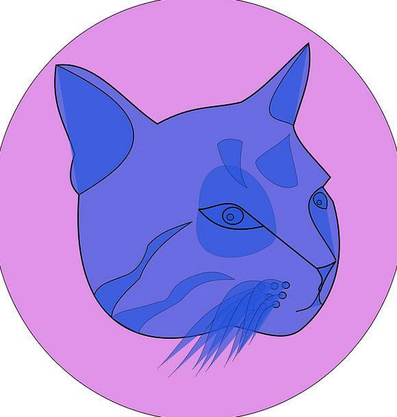 Cat Feline Skull Face Expression Head Circular Blu