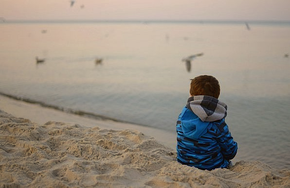 Child Youngster Natures Sea Marine Birds The Silen