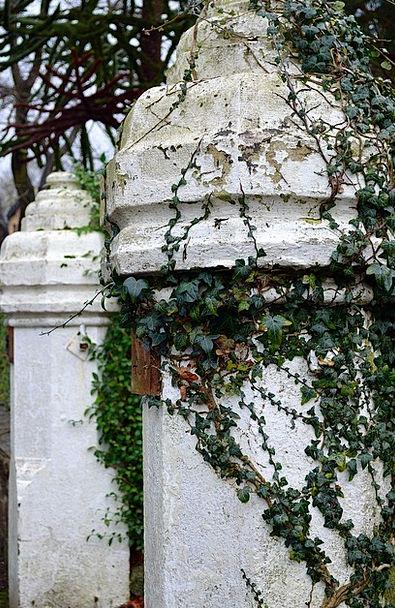 Column Pillar Landscapes Nature Gate Entrance Ivy