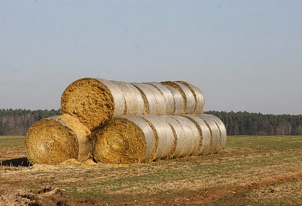 Straw Bales Landscapes Grass Nature Hay Straw Hay