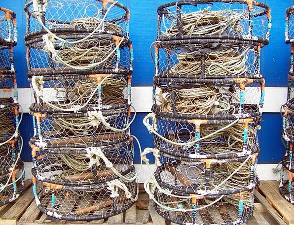 Newport Crab Oregon Pots Vessels Harbor Sea Port F