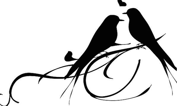 Birds Natures Cheeping Love Darling Chirping Chatt