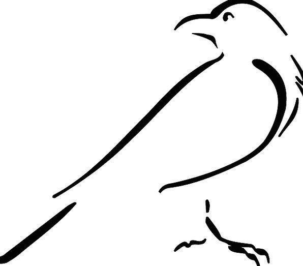 Crow Caw Fowl Outline Plan Bird Drawing Sketch Loo