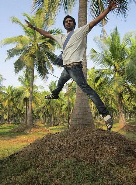Jumping Hopping Gentleman Leaping Man Tree Jump Hu