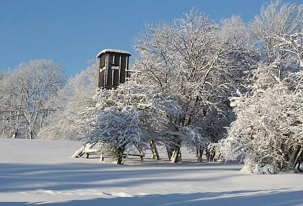 Winter Season Landscapes Snowflake Nature Wintry C