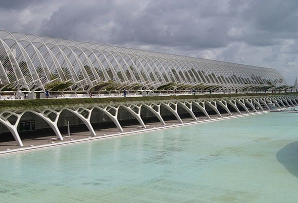 City Of Arts And Sciences Buildings Structure Arch