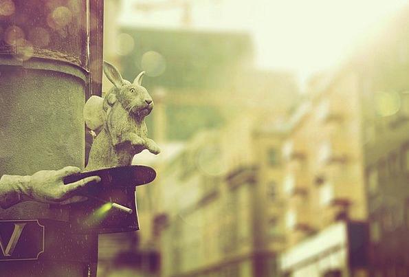 Vienna Buildings Bunny Architecture Hat Cap Rabbit