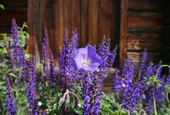 Blue Azure Landscapes Nature Summer Straw-hat Blue