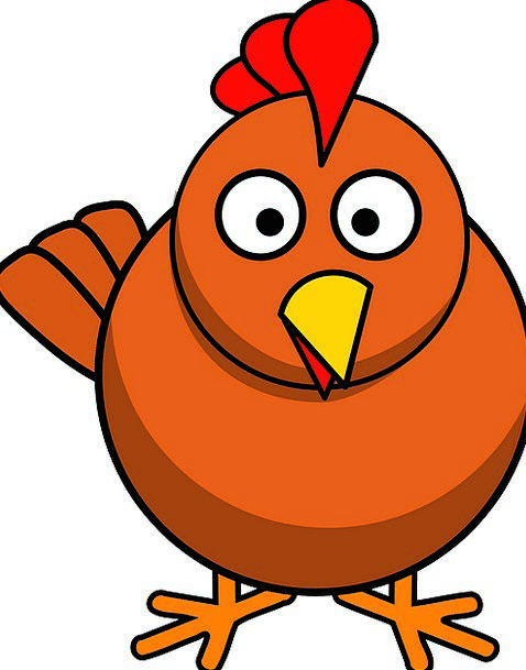 Chicken Cowardly Fowl Animal Physical Poultry Beak