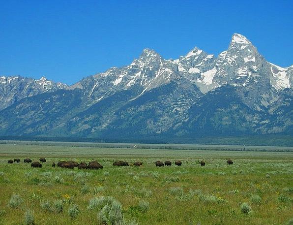 Grand Tetons National Park Landscapes Nature Lands