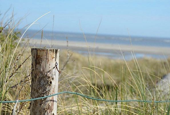 Pile Mound Bank Sand Shingle Dune Sea Marine