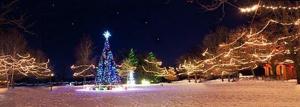 Christmas Town Winter Xmas Tree Holiday Break Seas