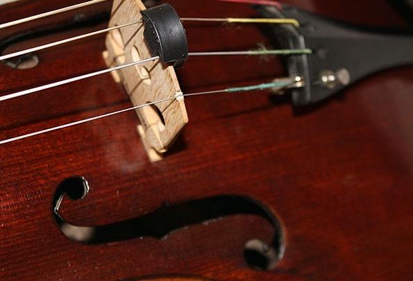 Viola Brown Chocolate Stringed Instrument Violin W