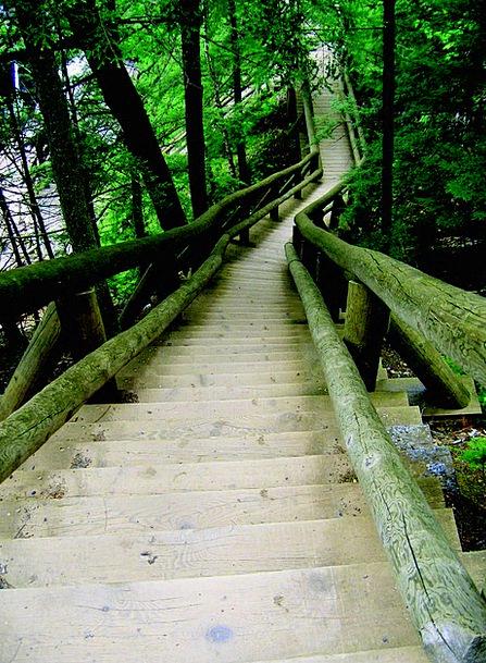 Ladder Ranking Canada Truro Nova Scotia Stair Park