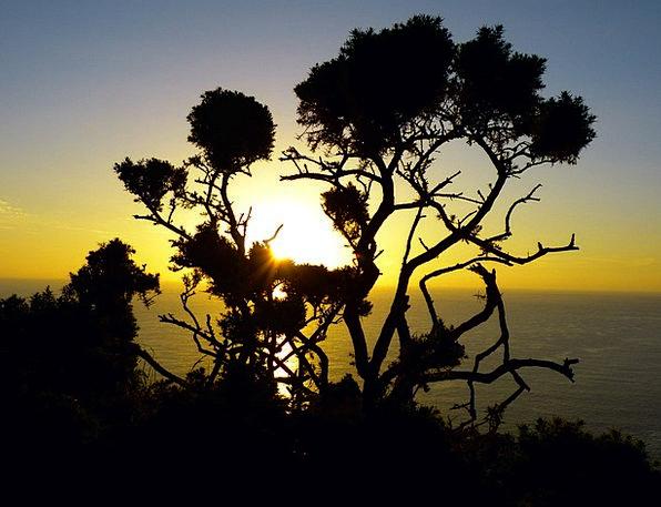 Sunset Sundown Vacation Disposition Travel Back Li