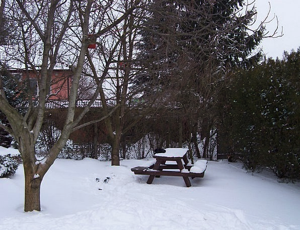 Garden Plot Season Rest Garden Winter Garden Bench