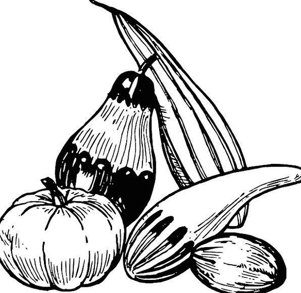 Vegetables Potatoes Drink Food Zucchini Eggplant V